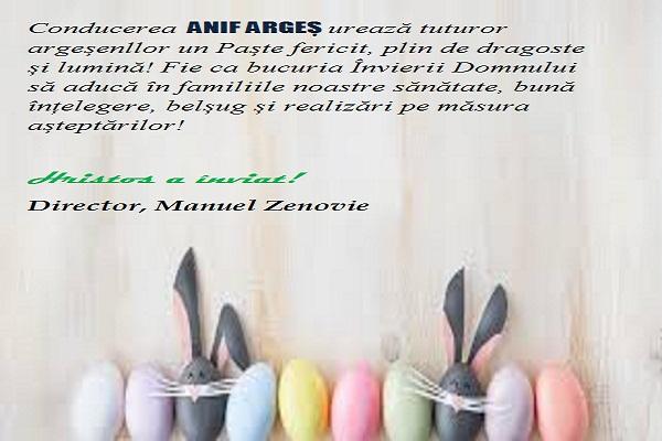 Anifpasti