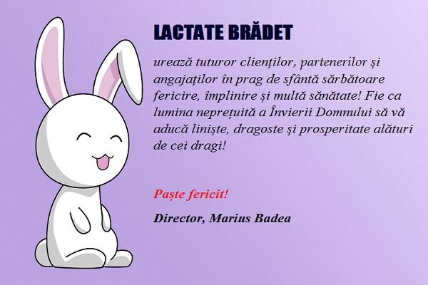Lactatebradet