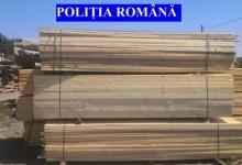 Polițiștii argeșeni au confiscat 80 de metri cubi de cherestea și lemne de foc