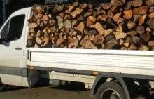 25 de hoţi de lemne, prinşi de poliţişti!