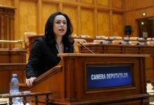 Simona Bucura Oprescu, gazdă pentru o delegaţie de parlamentari francezi