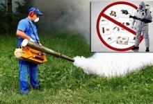 Dezinsecţie, dezinfecţie şi deratizare, la Mioveni