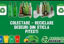 Campanie de colectare a deșeurilor din sticlă organizată de Salubritate 2000 S.A.